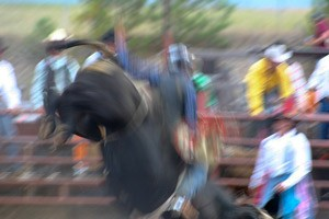 Bull-Ride-Blur-small
